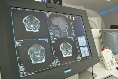 radiologija1_1.1.10